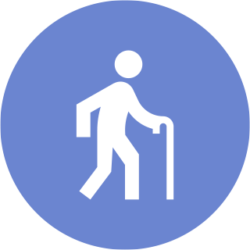 person with cane icon