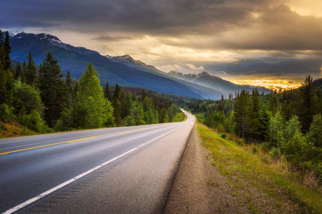 Highway through mountain lined with spruce trees